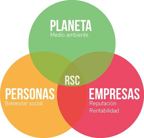 curso RSC online