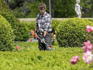 Curso de Jardinero Profesional